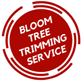 Tree Trimming Service Stockton CA | Tree Service; Tree Removal; Pruning; Stump Removal; Emergency tree service in Stockton