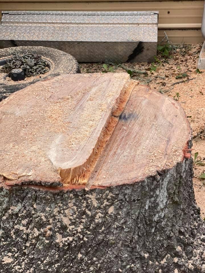Stump Removal Stockton CA
