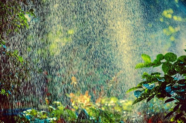 Water calendar - Irrigation