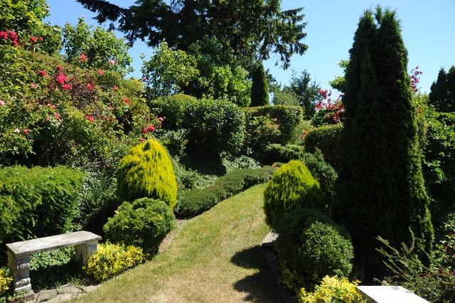 Advice from a Garden Design Expert